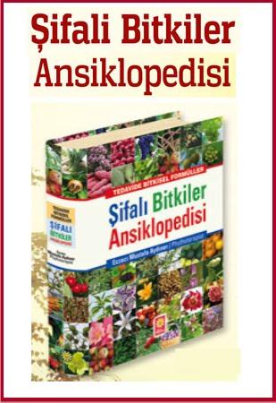 Şifalı Bitkiler<br />Ansiklopedisi<br />Hangi Hastalıklara<br />Hangi Bitki Iyi Gelir?<br />